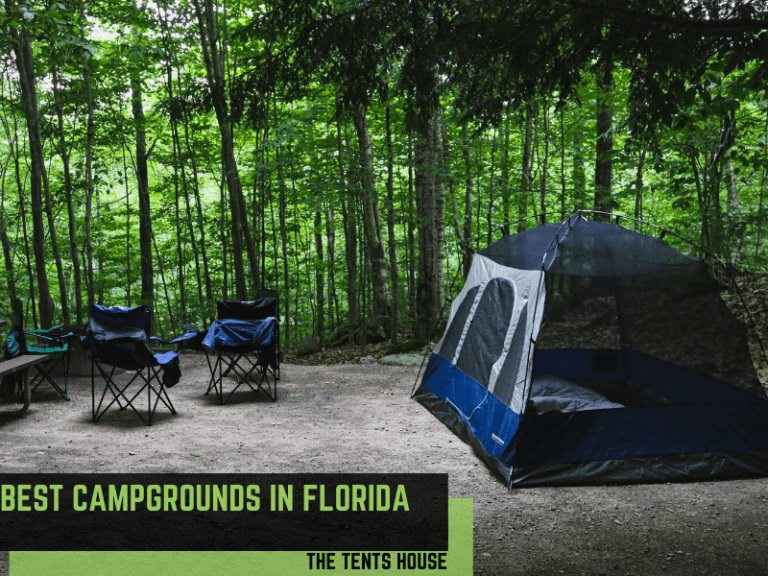 Best Campgrounds in Florida